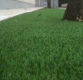 Giardinaggio a Terni